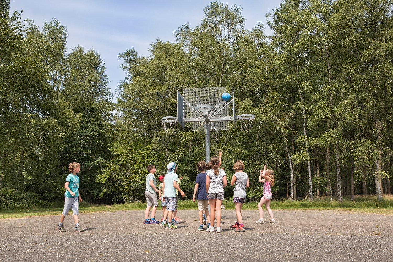 Groepje kinderen speelt basketbal