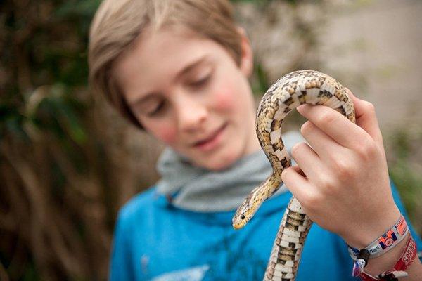 ZOO Serpentarium - Jonas Verhulst