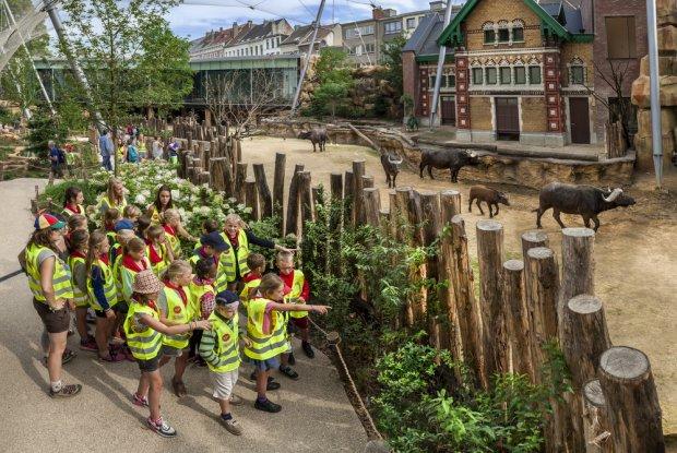 Kinderen op stap in ZOO Antwerpen