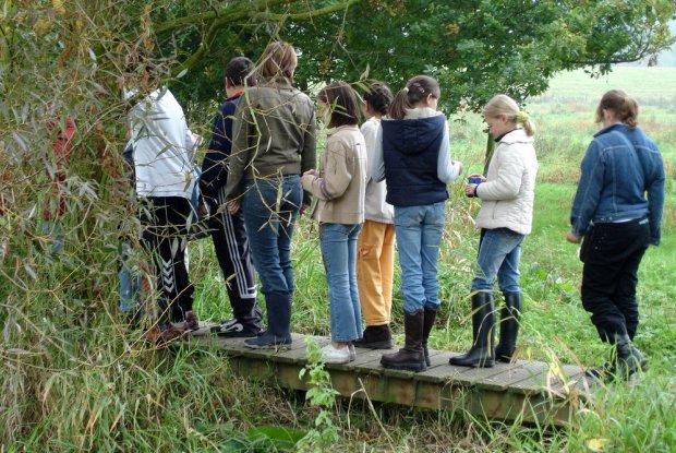 Wandeling in het Mechels Broek